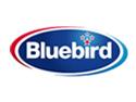 Bluebird New Zealand