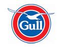 Gull New Zealand